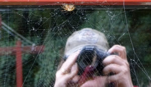 bex reflected behind spider web